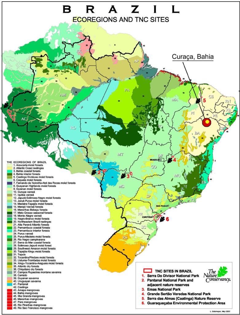 brazil-Ryan-23.11.07